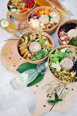 Zeleni Biser - Koncept zdravega človeka