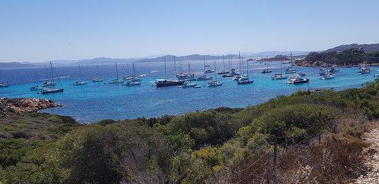 Scenic Boat Tour La Maddalena Archipelago from Palau: Vu d.une des iles