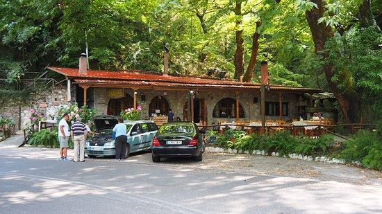 Artemisia, Grecia: Taverna