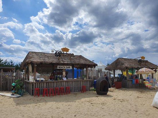 Surfyy Beach Camping : 서피비치 캠핑