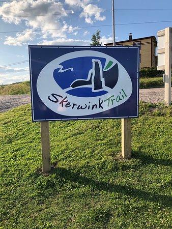 Skerwink 2019