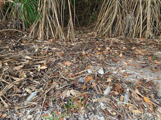 Fulhadhoo Island ภาพถ่าย