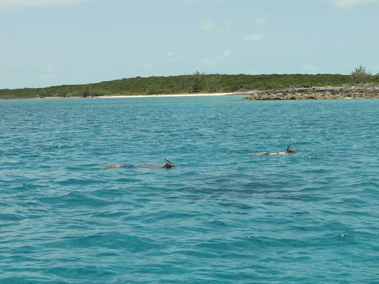 Tour de medio día en barco: Great snorkeling.