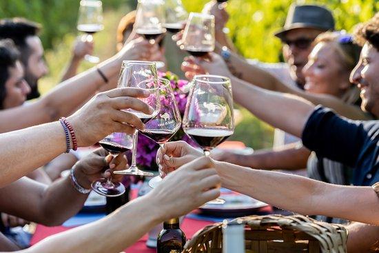 Montecorvino Rovella, Italië: Wine Tasting