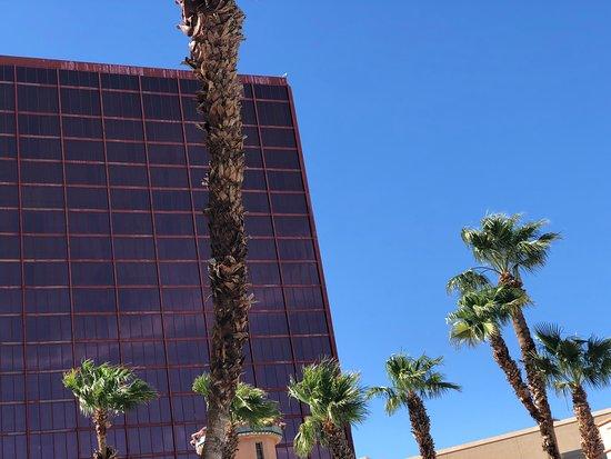 Rio - Voodoo Beach Las Vegas Pool