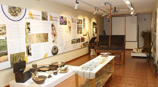 Museo del gofio MIGO