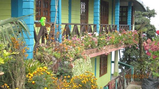 Takdah, Индия: Tinchule Homestay