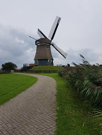Cheese, Clogs & Windmills