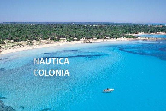 NAUTICA COLONIA