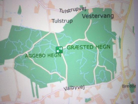Smuk Skov Med Masser Af Lys Anmeldelse Af Graested Aggebo Hegn