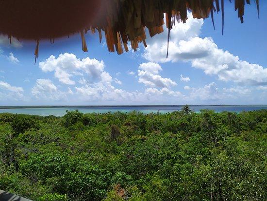 Chunyaxche, Mexico: Vista desde la atalaya