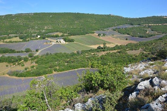 Banon, فرنسا: Chaque mercredi, au départ du camping : ballade à la rencontre de la Provence. Un moment de partage pour nos vacanciers !!