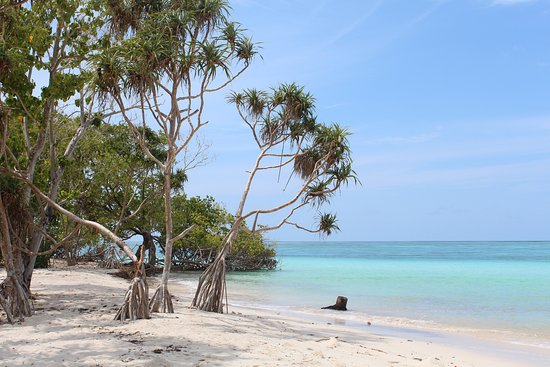 Goidhoo Island照片