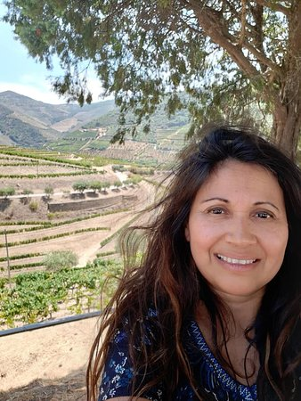 Complete Douro Valley Wine Tour with Lunch, Wine Tastings and River Cruise: Fazenda Croft! vista fantastica
