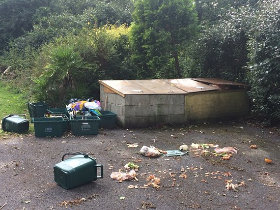 Cosheston, UK: Recycling area for Oyster Reach and Four Ashes after the local dog tried its best to eat a cherry tomato. View from living room of Oyster Reach
