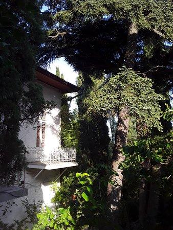 Вид дома с разных ракурсов. Дом 3-х этажный. На третьем этаже комната сестры Марии Павловны