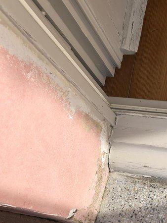 QC Terme Bagni Nuovi: Finestra del bagno stanza 209 junior suite