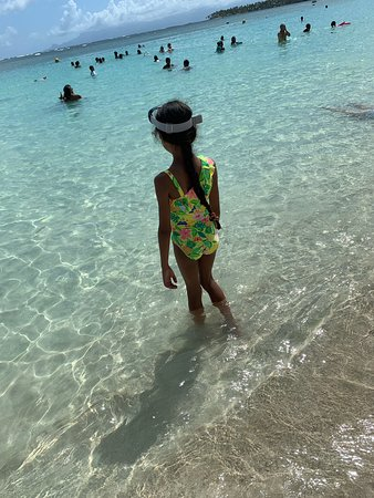 Magnifique plage de sable fin. Un réel lieu de paradis