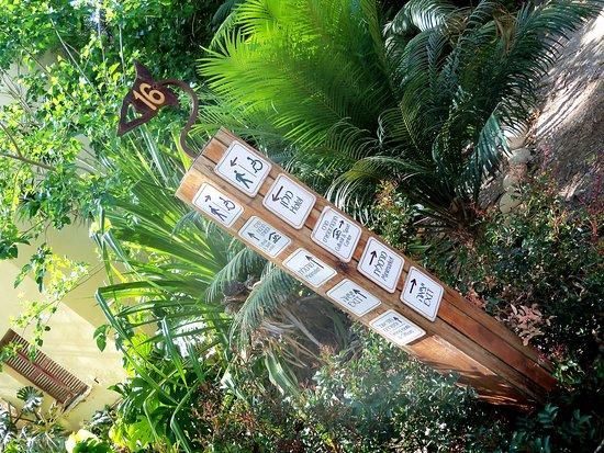 Nel percorso vasta è la vegetazione dell'orto botanico.