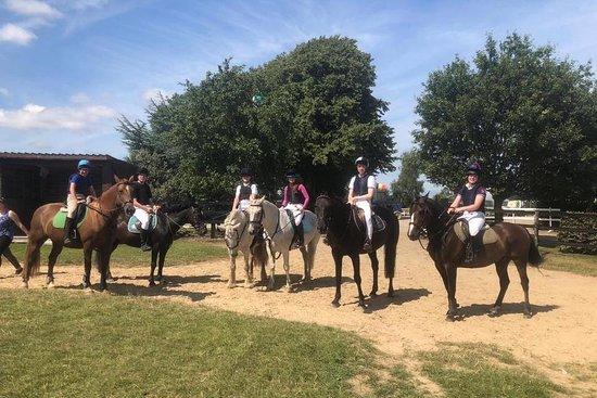 Riverside Equestrian Centre - Finns