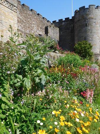 Stirling Castle Entrance Ticket: Gorgeous garden at Stirling castle
