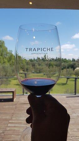 Tomando um vinho direto da fonte!