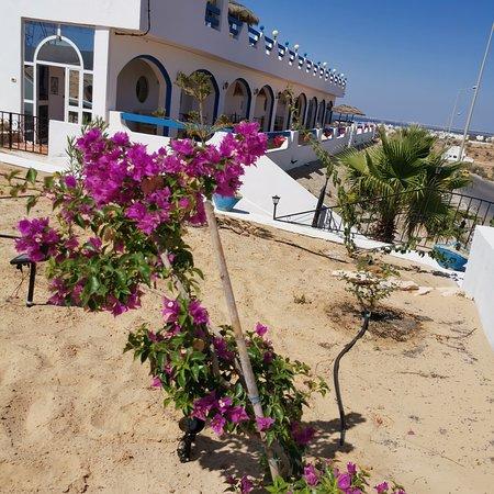 Residence Djerba Azur: Djerba vue Guellala