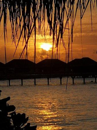 Sunset 💗