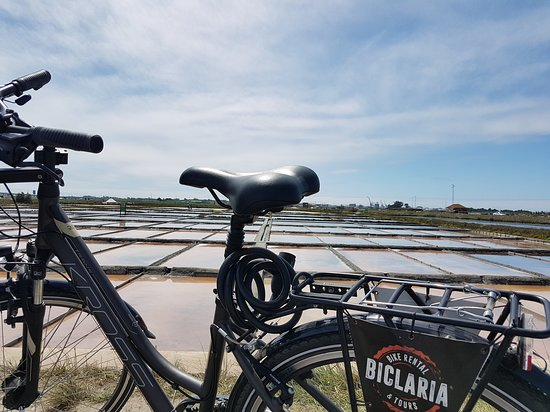 Biclaria - Bike Rental & Tours