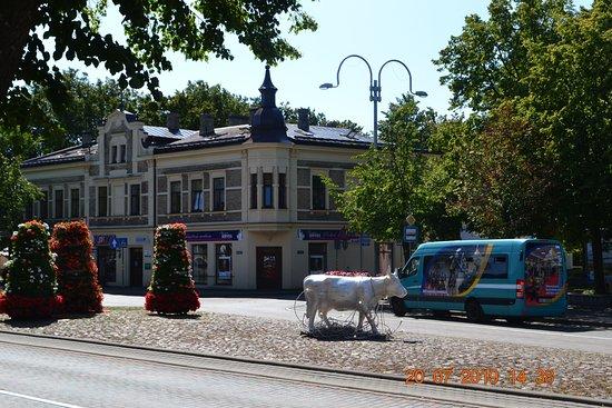 Sculpture cow: Корова Света
