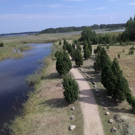 Lapmezciems, Latvia: Place for walking around. See different types of birds and fishes.