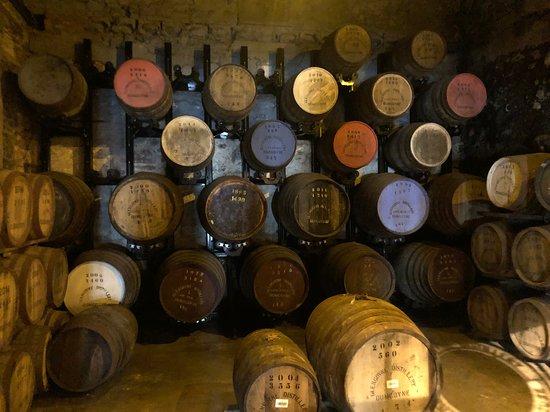 Castillo de Stirling y Glengoyne Whisky Distillery Day Tour.: Aged barrels of scotch at Glengoyne