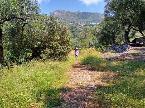 写真Corfu Walks and Hikes枚