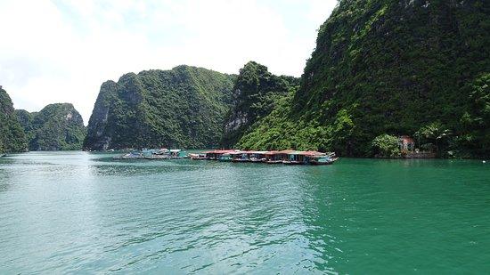 Paradise Luxury Day Cruise With Private Accommodation: Paradise Cruise