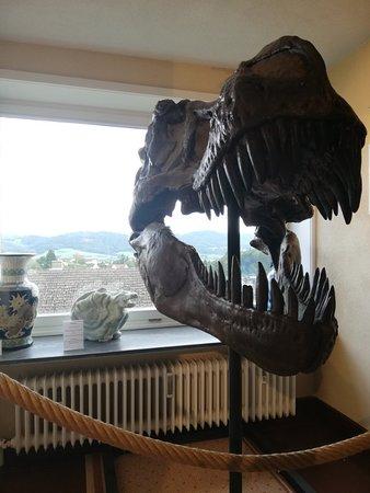 Deutsches Drachenmuseum