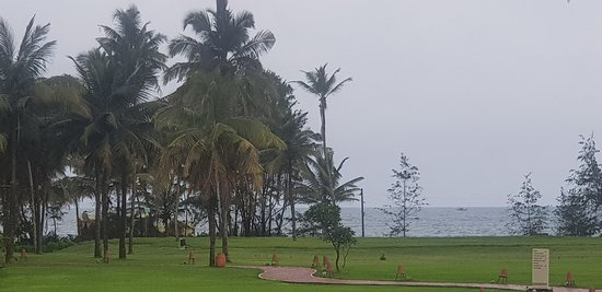 Gardens and the sea