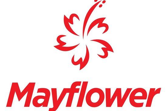 Mayflower Holidays Sdn Bhd