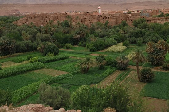Marocco Trips: Una valle di contrasti