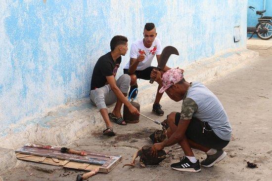 Marocco Trips: 12 agosto, festa del sacrificio