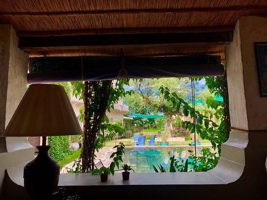 Mandawa Kothi: View to Pool!!