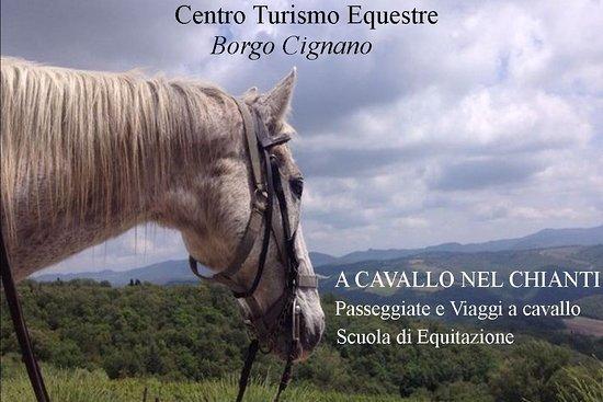 Centro di Turismo Equestre Borgo Cignano