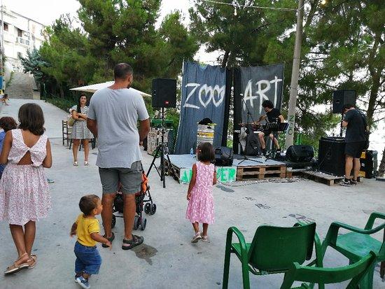Zooart fotografia