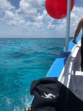 Blue Angel Dive & Scuba School (Cozumel) - Updated 2019
