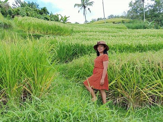 Bali Sundaram Holidays
