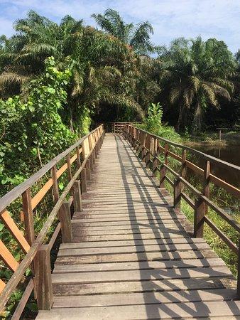 LUFASI Nature Park 사진