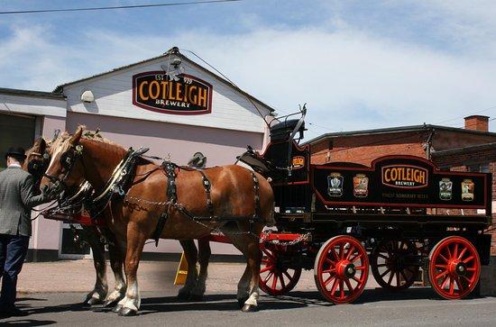 Cotleigh Brewery