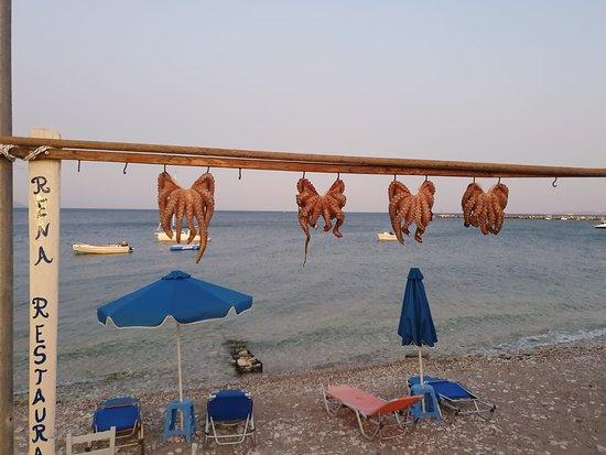 Passeggiando per ireon, la sera vengono messi a seccare alla brezza del mare i polpi che prendono quel sapore  che solo  qui hanno .