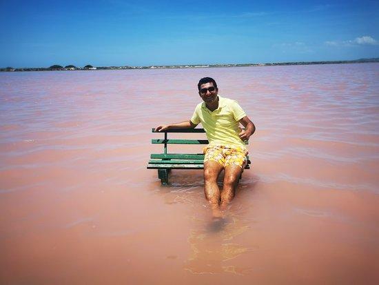 Galerazamba Foto