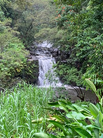 ‪‪Small-Group Road to Hana Luxury Tour‬: waterfall‬