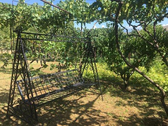 Khidistavi, Georgia: Peradze's Ranch